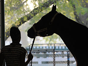 Grand Style prepares for the Woodbine Oaks.