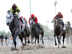 Graydar wins the 2013 New Orleans Handicap.