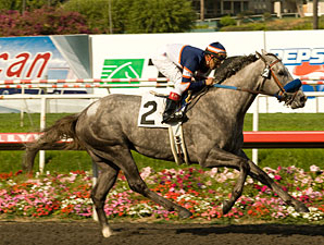 Grazen Favored in Cal Cup Classic
