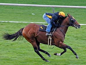 Great Attack works at Keeneland 10/24/2011.