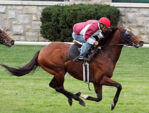 Great Attack - Keeneland Work October 26, 2012