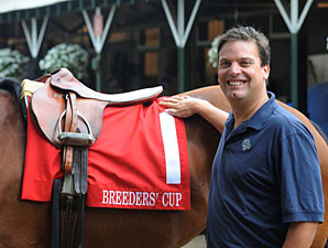 Colored Saddle Cloths for Breeders' Cup