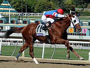 New Owner to Run Groupie Doll in Cigar Mile