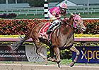 Groupie Doll Roars Out in Hurricane B
