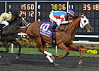 Groupie Doll Sets Track Record in