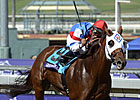 Groupie Doll Cruises in Filly &amp; Mare Sprint