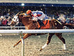 Masters Key to Groupie Doll's Campaign