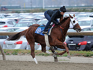 Groupie Doll Breezes Half Mile for Cigar Mile