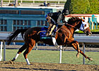 Groupie Doll Highlights F&M Sprint Field