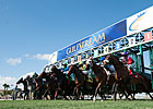 Gulfstream and Calder to End Dates War