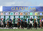 Gulfstream Meet Handle Average