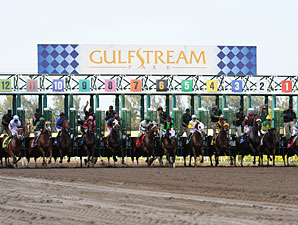 3YO Stakes Series Kicks Off at Gulfstream
