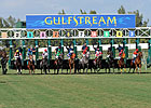 Gulfstream Amends Schedule, to Race Jan. 2