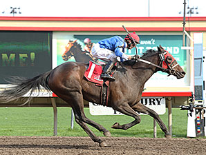 Gypsy Melody wins the 2014 Lady Slipper Stakes.