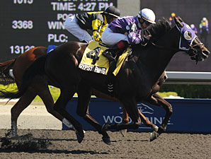 Gypsy Ring wins the 2012 Providence Stakes.