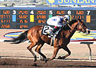 Harissa Gets Hot in Sharp Sunland Oaks Win 