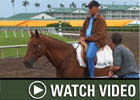 HRTV: Inside Information - 3/14/08