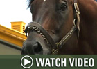 HRTV: Inside Information - 12/17/07