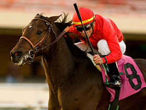 Haimish Hy Finds Right Spot in San Luis Rey