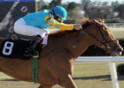 Halo Najib Heads Lane's End Stakes