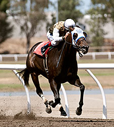 Handfull wins the 2015 California Governor's Cup.