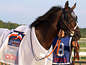 Handsome Mike wins the 2012 Pennsylvania Derby.