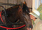 Hangin' With Haskin: Why Was Orb Retired?