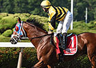 Hangover Kid Retired to Stud in Maryland