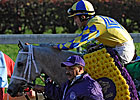Hansen Headed for Aqueduct's Gotham Next