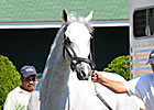 Hansen Settles in at Churchill Downs&#39; Barn 42