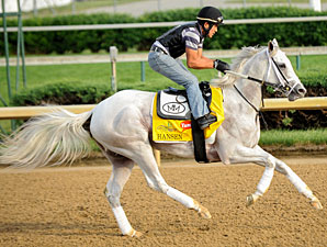 Hansen Will Take Pass on Preakness Stakes