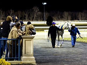 Hansen schooling at Turfway, March 9, 2012.