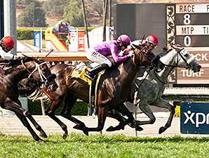 Hard Not To Like wins the Gamely Stakes.