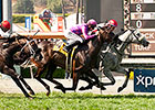 Hard Not to Like Skims Rail, Takes Gamely