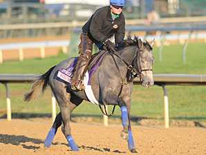 Trainer Cox Makes Breeders' Cup Debut
