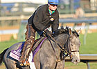 Trainer Cox Makes Breeders&#39; Cup Debut