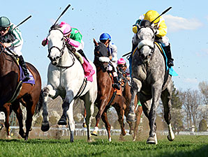 Hard Not to Like wins the 2014 Jenny Wiley.