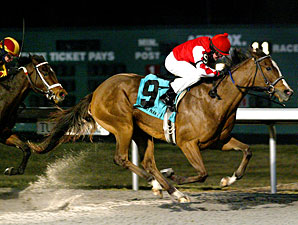 Harlan's Ruby wins the 2011 Valdale.