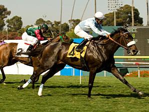 Harmonious wins the 2010 American Oaks.