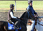 &#39;Nice, Easy&#39; Keeneland Workout for Harmonious