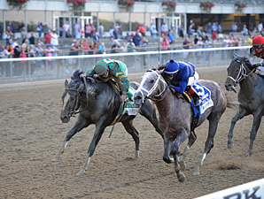Havana wins the 2013 Champagne Stakes.