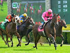 Havelock Mows Way to Victory in Woodford