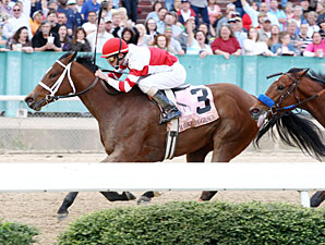 HOY Could be Ultimate Goal for Havre de Grace