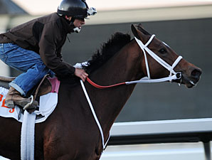 Havre de Grace Breezes Five Furlongs at FG