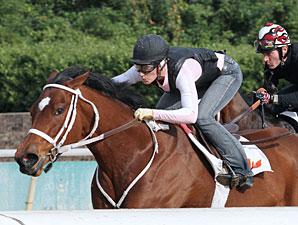 Havre de Grace Tunes Up for Delaware Handicap
