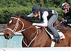 Havre de Grace Tunes Up for Delaware Handicap