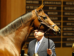HOY Havre de Grace Brings $10M at F-T