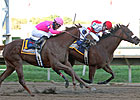 Havre de Grace Nips Blind Luck in Cotillion
