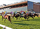 IL Racing Gutted Unless Legislature Acts