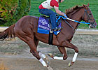 The Breeders&#39; Cup Work Tab for Oct. 31